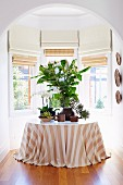 Houseplants on a table with a striped tablecloth in the bay window