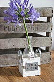 Purple agapanthus in glass vase with hand-made gift tag in tiny wooden crate