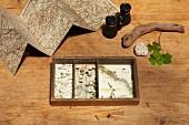Altes Kästchen mit Landkarten beklebt, Fernglas zwischen Landkarte und Naturfundstücken auf Holztisch