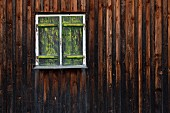 Rustikale Holzwand mit geschlossenem grünem Vintage Fensterladen