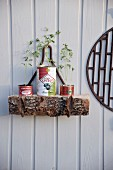 Old cans upcycled as plant pots for seedlings