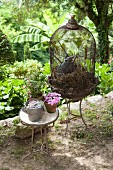 Vintage birdcage and potted plant on side table in garden