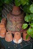 Dekorativ arrangierte Tontöpfe im Garten