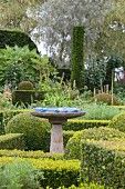 Birdbath on plinth in topiary garden