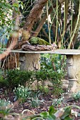 Wreath on stone bench and flowering snowdrops in spring garden