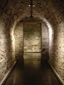 Catacomb-style vaulted corridor with minimalist spotlights on lighting rail