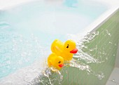 Water slopping out of bath carrying rubber duckies