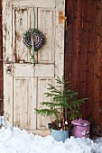 Wreath of pine cones and small Christmas tree in front of old door