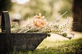 Korb aus Holz mit gepflückten Wiesenblumen