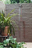 Garden shower on brick wall painted dark grey and potted foliage plant