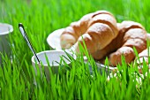 A cup and croissants on grass