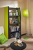 DIY-Regal aus Holzlatten und MDF-Platten in Schwarz und Grün, im Wohnzimmer