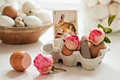 Roses in eggshells and vintage playing card with picture of hare arranged in eggbox