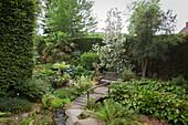 Kleine Holzbrücke in idyllischem Garten mit Bäumen und Palme vor geschnittener Hecke