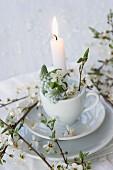 Brennende Kerze in Tasse mit Traubenhyazinthen und blühenden Schlehenzweigen