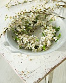 Branches of blackthorn blossom in bowl