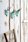 Hand-decorated deer antlers on turquoise wooden plaque on shabby-chic board wall