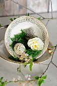Moss, quail egg, small narcissus flower and feathers in vintage coffee cup