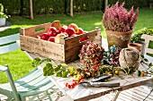 Steige mit frischen Äpfeln, Blumen, Gartenschere und Garnrolle auf Gartentisch