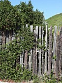 Weathered plain wooden fence in front of hilly summer landscape