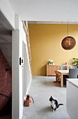 Blick in offenen Wohnraum auf Essplatz und gelb getönte Wand, im Vordergrund Katze auf Betonboden