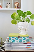 House plant in white china pot shaped like girl's head on top of retro tin and stacked magazines