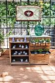 Antike Schubladenkommode mit Pflanzen und Porzellangeschirr in sonnigem Gewächshaus