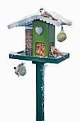 Hand-made bird nesting box