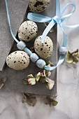 Easter still-life arrangement of quail eggs, beads on ribbon & hydrangea florets