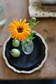 Top view of yellow pot marigold in glass vase on shabby-chic wooden table