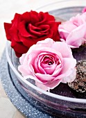 Red and pink roses floating in glass dish