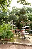 Metall-Klappstühlen um runden Gartentisch und formgeschnittenen Buchsbäumchen in sommerlichem Garten