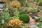 Stone path leading through herbaceous borders in autumnal garden