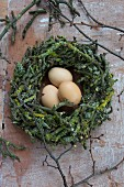 Hens' eggs in Easter nest of apple tree twigs