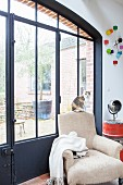 Cat sitting on vintage armchair in front of glass and metal door