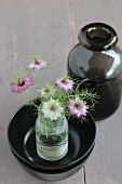 Love-in-a-mist in glass bottle in stack of black bowls next to glass vase on grey-painted wooden surface