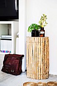 Side table made of wooden sticks, green plants in pharmacist glasses