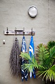 Wall hook strip with towels and a dried branch next to a palm tree against a gray wall