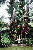 Tropischer Garten mit Steinskulptur und Rasen