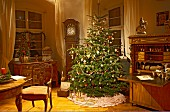 Christmas tree classically decorated and antique furniture in traditional interior