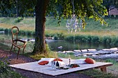 Picnic by the river decorated with chandelier and chair hung from tree