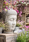 Head of Buddha on wooden crate surrounded by potted flowering plants on terrace