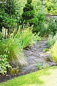 Stone-flagged garden path surrounded by flowering perennials, yellow-eyed grass and feather grass