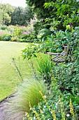 Flowering perennials and weathered wooden bench in corner of garden