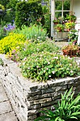 Stone wall and flowering perennials in corner of terrace
