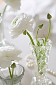 White ranunculus in small crystal vases decorating table