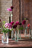 Flowers arranged in various vases on wooden table