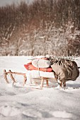 Sledge loaded with blankets and backpack in winter landscape