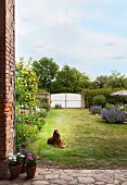 Dog lying on lawn in large, rustic garden with white gate
