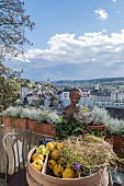 Fruit bowl, planters and bust on balcony with view over city